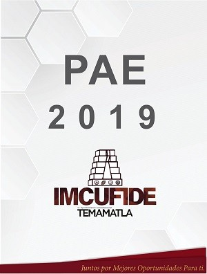 PAE 2019 IMCUFIDE
