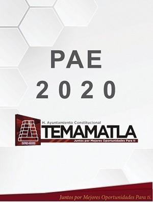 PAE 2020 AYUNTAMIENTO